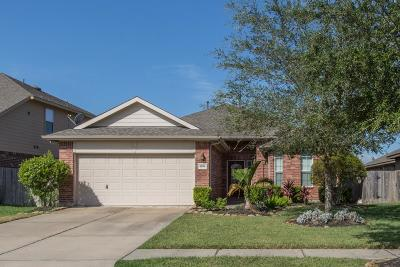 League City Single Family Home For Sale: 4496 Gran Canary Drive