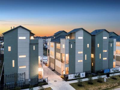 Harris County Condo/Townhouse For Sale: 1016 W 18th Street