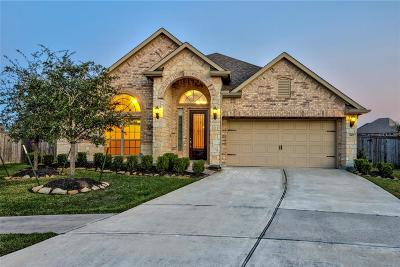 Manvel Single Family Home For Sale: 3937 Desert Zinnia Court