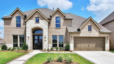 Katy Single Family Home For Sale: 23818 Songlark Valley Place
