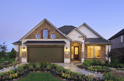 Rosenberg Single Family Home For Sale: 8727 Gladiolus Drive