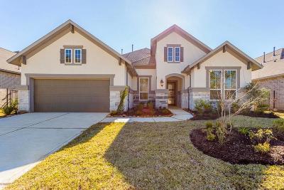 Porter Single Family Home For Sale: 5176 Andorra Bend Lane