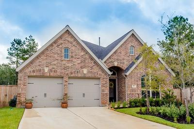 Montgomery Single Family Home For Sale: 203 Sunrise Haven Drive