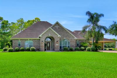 Pearland Single Family Home For Sale: 1738 Hillhouse Road