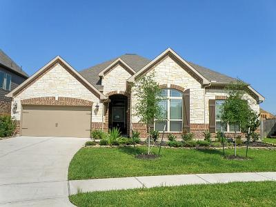 Friendswood Single Family Home For Sale: 1517 Dusty Rose Court