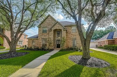 Houston Single Family Home For Sale: 1303 Rosemeadow Drive