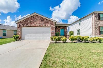 Houston Single Family Home For Sale: 1918 Helvick Boulevard