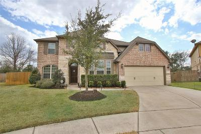 Houston Single Family Home For Sale: 4403 Pine Hollow Trace