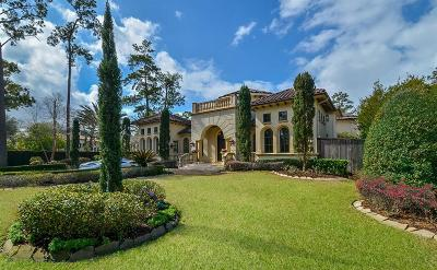 Houston Single Family Home For Sale: 707 E Friar Tuck Lane