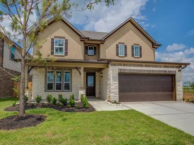 Missouri City Single Family Home For Sale: 2703 Dry Creek Drive