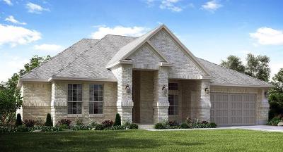 Rosharon Single Family Home For Sale: 13810 Citruswood Park Lane