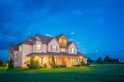 Navasota Single Family Home For Sale: 10953 Vista Lake Court