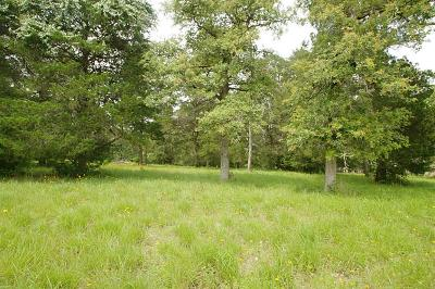 New Ulm Residential Lots & Land For Sale: 19 North Falls Drive