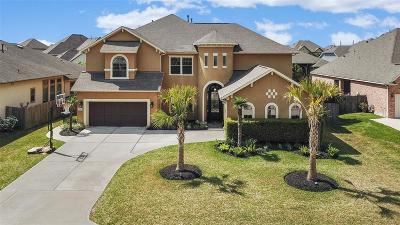 Tomball Single Family Home For Sale: 17611 Rosel Oaks Lane