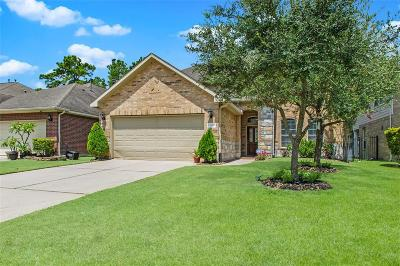 Harris County Single Family Home For Sale: 218 Tortoise Creek Place