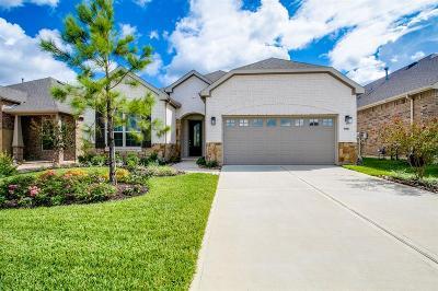 Single Family Home For Sale: 168 Chestnut Bay