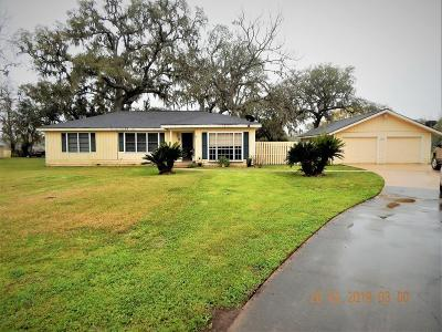 Brazoria Single Family Home For Sale: 2895 County Rd 353