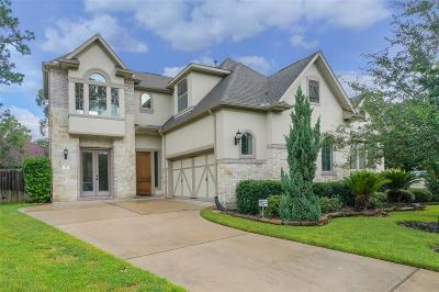 The Woodlands Condo/Townhouse For Sale: 30 Knights Crossing Drive
