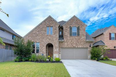 Houston Single Family Home For Sale: 2016 Arrowood Glen Drive