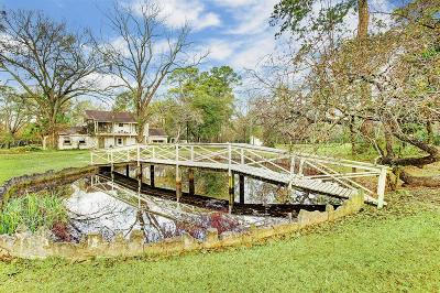 Houston Single Family Home For Sale: 27 Rollingwood Drive