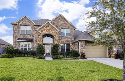 Katy Single Family Home For Sale: 1122 Falling Water Lane