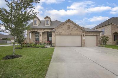 Dickinson Single Family Home For Sale: 224 Harbor Bend Lane