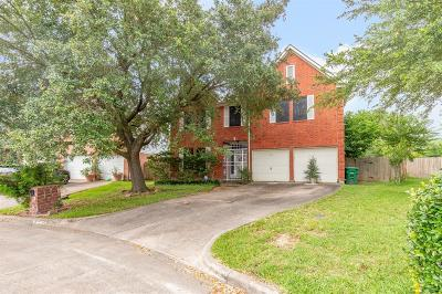 Houston Single Family Home For Sale: 10219 Finchwood Lane