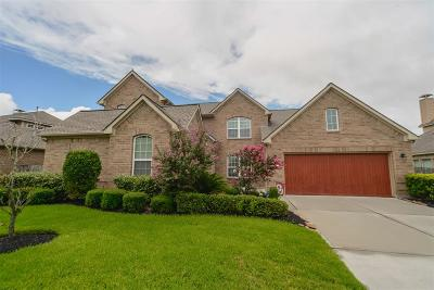 Tomball Single Family Home For Sale: 12406 Muller Sky Court