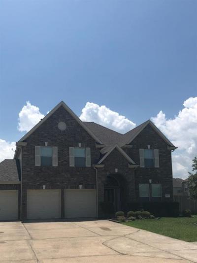 Baytown Single Family Home For Sale: 8623 Briar Oaks Lane