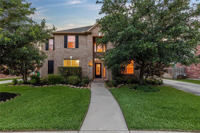 Katy Single Family Home For Sale: 9623 Moonstone Mist Lane