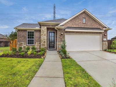 Pearland Single Family Home For Sale: 2115 Terrace Gate Lane