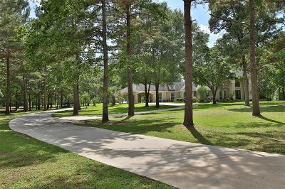 Magnolia Single Family Home For Sale: 4325 Fm 149 Road