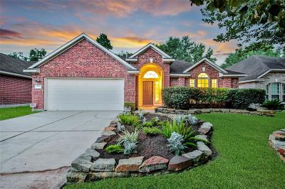 Conroe Single Family Home For Sale: 165 Fairwind Trail Drive