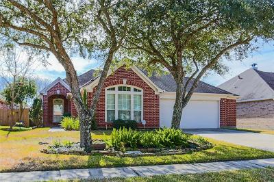 Galveston Single Family Home For Sale: 2214 Waters Edge Lane