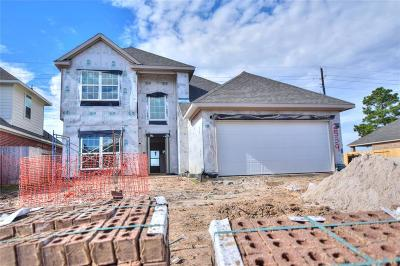 Katy Single Family Home For Sale: 2539 Pines Pointe Drive