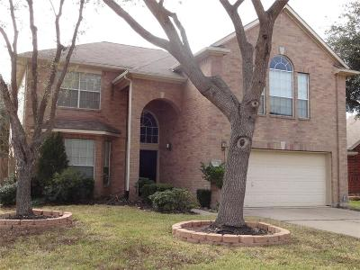 Sugar Land Single Family Home For Sale: 11414 White Forge Court