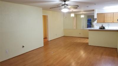 Houston Condo/Townhouse For Sale: 10641 Braes Bend Drive