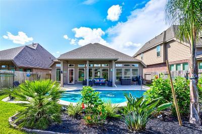 Pearland Single Family Home For Sale: 3613 Cibolo Court