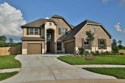 Tomball Single Family Home For Sale: 10203 Silver Shield Way