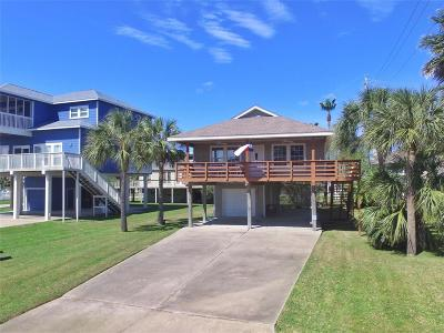Single Family Home For Sale: 13834 Pirates Beach Boulevard