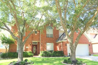 Houston Single Family Home For Sale: 18511 Autumn Park Drive