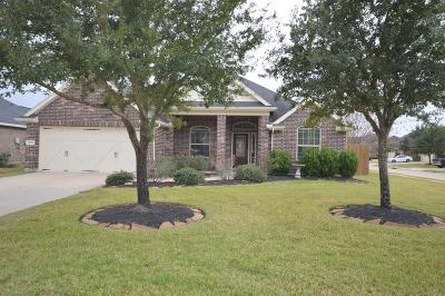 Katy Single Family Home For Sale: 28611 Wing Elm Drive