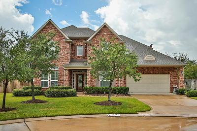 Tomball Single Family Home For Sale: 17603 Edengrove Drive