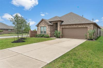 Pearland TX Single Family Home For Sale: $250,000