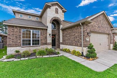 Tomball Single Family Home For Sale: 12039 Rockridge Falls Drive