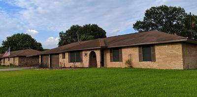 Baytown Single Family Home For Sale: 3204 Garth Road