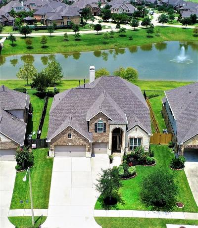 Friendswood Single Family Home For Sale: 908 Dolan Springs Lane