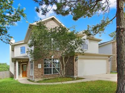 Tomball Single Family Home For Sale: 20215 Ribbonwood Point Court