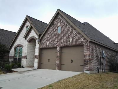 Pearland Single Family Home For Sale: 13926 Pebble Falls Lane