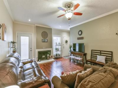 Harris County Condo/Townhouse For Sale: 1201 Bering Drive #11